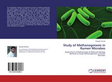Обложка Study of Methanogenesis in Rumen Microbes