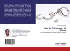 Juvenile Delinquency in Ghana的封面