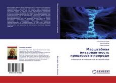 Copertina di Масштабная инвариантность процессов в природе