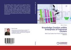 Обложка Knowledge Creation within Enterprises of Industrial Clusters