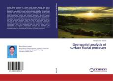 Buchcover von Geo-spatial analysis of surface fluvial processes