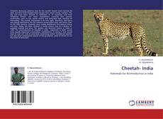 Bookcover of Cheetah- India