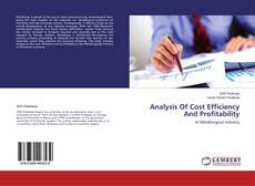 Borítókép a  Analysis Of Cost Efficiency And Profitability - hoz