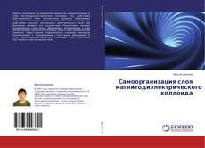 Copertina di Самоорганизация слоя магнитодиэлектрического коллоида