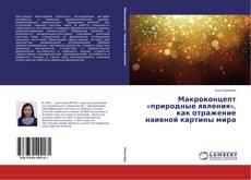 Capa do livro de Макроконцепт «природные явления», как отражение наивной картины мира