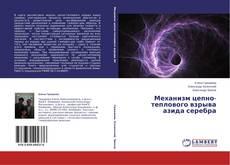 Bookcover of Механизм цепно-теплового взрыва азида серебра
