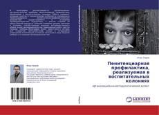 Bookcover of Пенитенциарная профилактика, реализуемая в воспитательных колониях