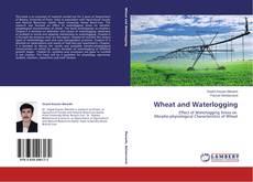 Portada del libro de Wheat and Waterlogging