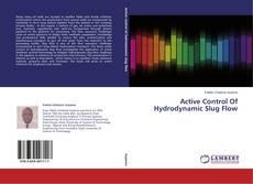 Borítókép a  Active Control Of Hydrodynamic Slug Flow - hoz