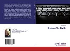 Couverture de Bridging The Divide