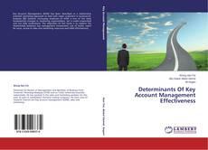 Обложка Determinants Of Key Account Management Effectiveness