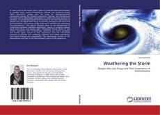 Обложка Weathering the Storm