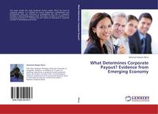 Bookcover of What Determines Corporate Payout? Evidence from Emerging Economy