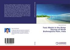 Buchcover von Toxic Metals in the Water Sources of North Brahmaputra Plain, India