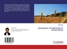 Bookcover of Association of yield traits in bread wheat