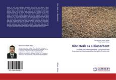 Bookcover of Rice Husk as a Biosorbent
