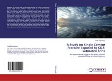 Bookcover of A Study on Single Cement Fracture Exposed to CO2-saturated Brine