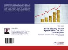Bookcover of Social security wealth system effect on final consumption