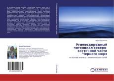 Углеводородный потенциал северо-восточной части Черного моря的封面