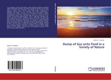Bookcover of Dump of Gas onto Fluid in a Variety of Nature