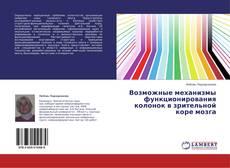 Bookcover of Возможные  механизмы функционирования колонок в зрительной коре мозга