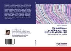 Bookcover of Нелинейные алгебраические системы уравнений