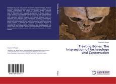 Treating Bones: The Intersection of Archaeology and Conservation的封面