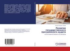 Развитие государственного программного аудита kitap kapağı
