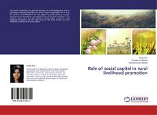 Couverture de Role of social capital in rural livelihood promotion