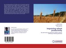 Bookcover of Improving wheat productivity