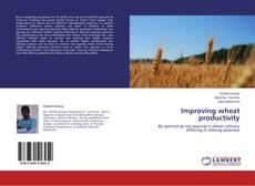 Portada del libro de Improving wheat productivity