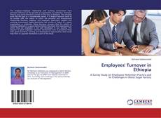 Bookcover of Employees' Turnover in Ethiopia