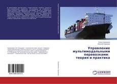 Portada del libro de Управление мультимодальными перевозками: теория и практика