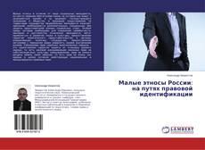 Couverture de Малые этносы России: на путях правовой идентификации