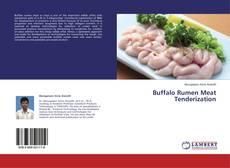 Buffalo Rumen Meat Tenderization的封面
