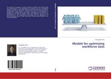 Bookcover of Models for optimising workforce sizes