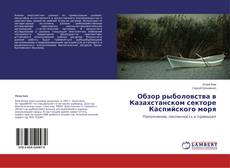 Bookcover of Обзор рыболовства в Казахстанском секторе Каспийского моря