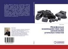 Обложка Межфазные взаимодействия при увлажнении   угольных пластов