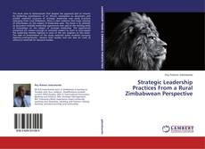 Buchcover von Strategic Leadership Practices From a Rural Zimbabwean Perspective