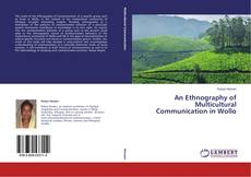 Borítókép a  An Ethnography of Multicultural Communication in Wollo - hoz