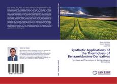 Copertina di Synthetic Applications of the Thermolysis of Benzamidoxime Derivatives