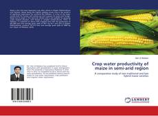 Bookcover of Crop water productivity of maize in semi-arid region