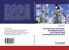Bookcover of Технология железо-молибденового катализатора конверсии метанола