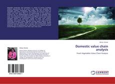 Bookcover of Domestic value chain analysis