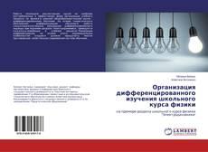 Copertina di Организация дифференцированного изучения школьного курса физики