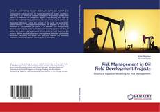 Capa do livro de Risk Management in Oil Field Development Projects