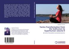 Buchcover von Tantra Transformation from the Subhuman to Superhuman volume-9