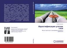 Bookcover of Идентификация утечек газа