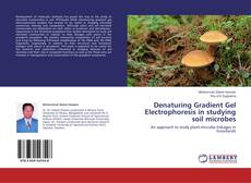 Обложка Denaturing Gradient Gel Electrophoresis in studying soil microbes
