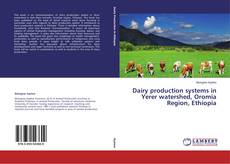 Bookcover of Dairy production systems in Yerer watershed, Oromia Region, Ethiopia